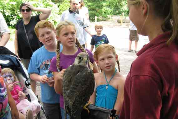 May is Birdathon and Bird Migration Month at the Bronx Zoo