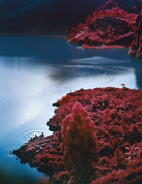 Richard Mosse, Lac Vert, 2012, from The Enclave (Aperture, 2013)