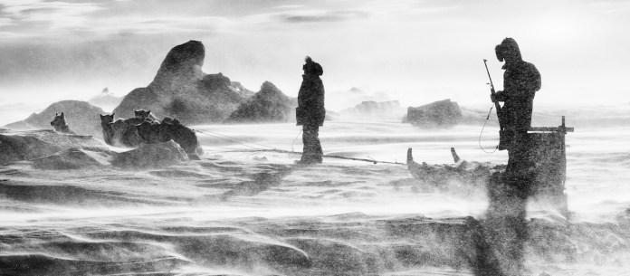 Carsten Egevang, East Greenland, Scoresbysund, 2016 © Carsten Egevang