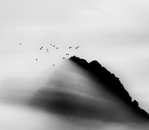 Carsten Egevang, West Greenland, Thule, 2014 © Carsten Egevang