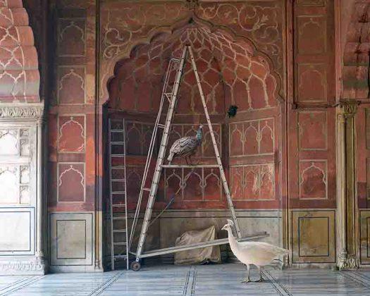 Karen Korr The One Spoken to by Angels, Jama Masjid Delhi (2014)