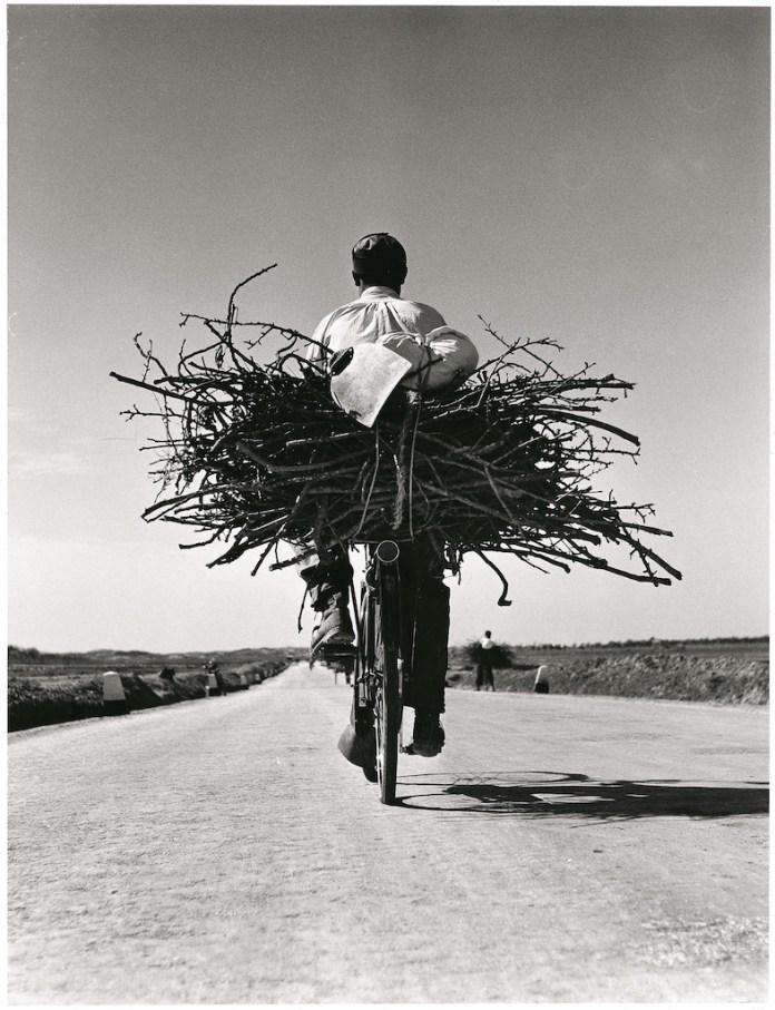 Fulvio Roiter Sicilia, Sulla strada Gela – Niscemi, 1953 ©Fondazione Fulvio Roiter