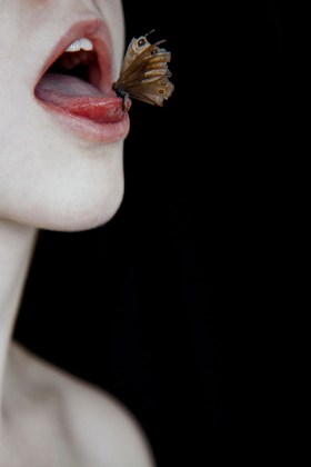 Elena Helfrecht, The seeds of the past are blooming now, 2017, Stampa fine art su carta Hahenmühle Photo Rag, cornice con vetro museale, 80 x 65 cm, Edizione: 1/7, Courtesy: Elena Helfrecht & Luisa Catucci Gallery