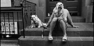 Le fotografie di Elliott Erwitt scattate ai cani