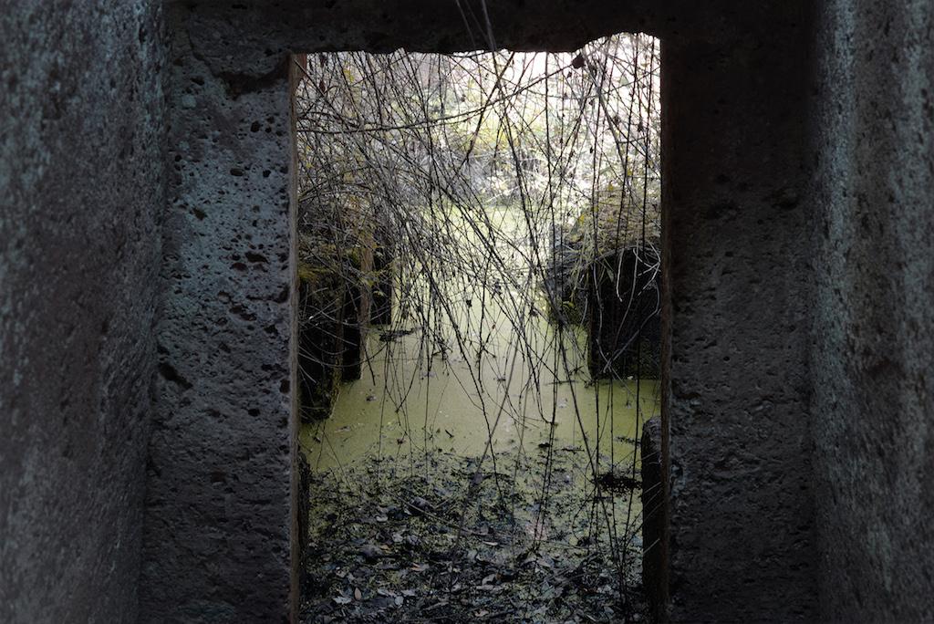 Silvia Camporesi mostra Ferrara