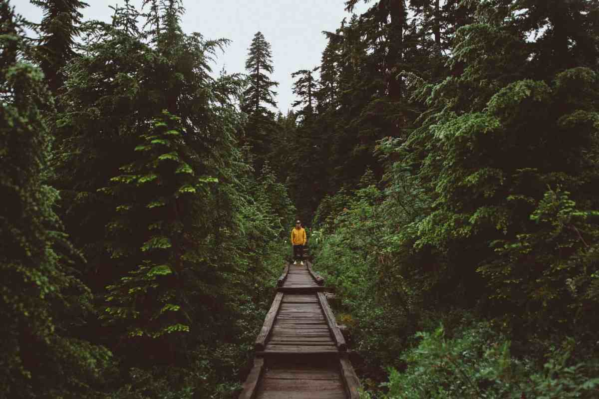 20 Energizing Hikes in the PNW