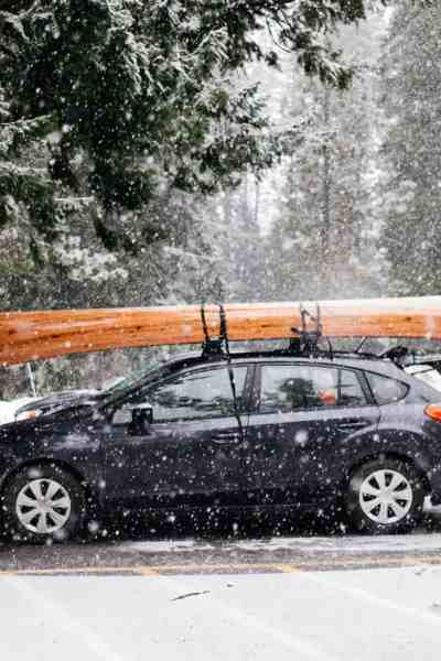 12 Essentials You Need to Keep In Your Car Emergency Kit