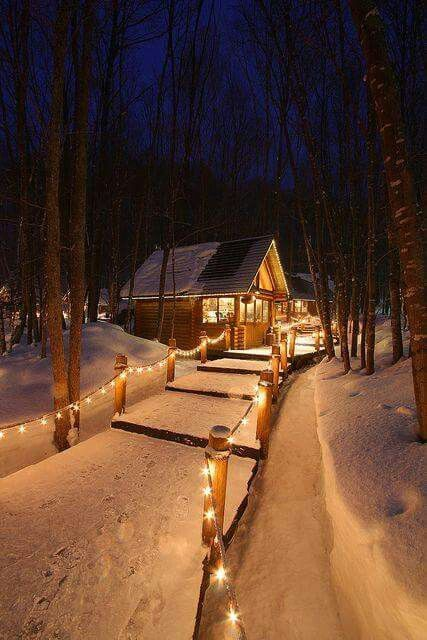 lighted walkway through the snow
