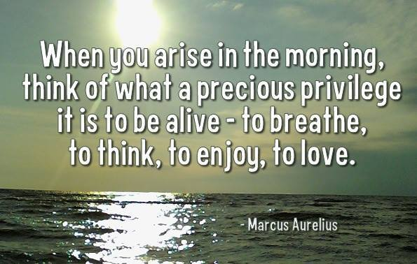 when you arise in the morning