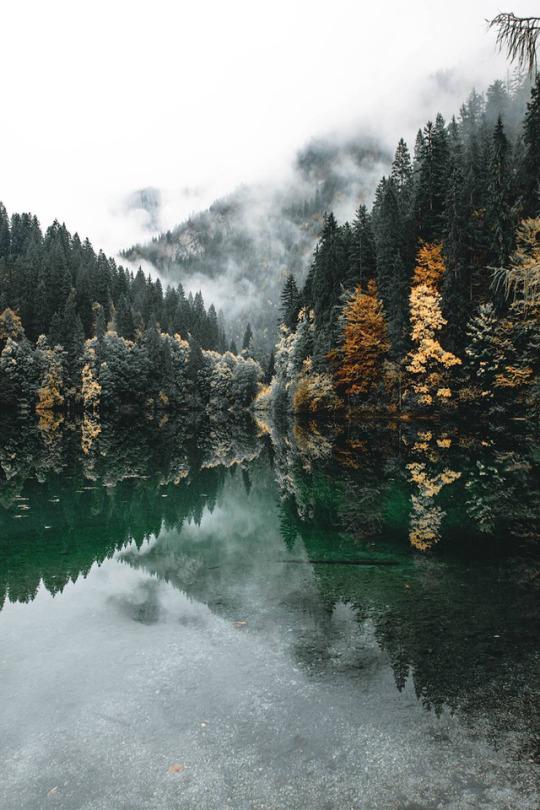fall colors near lake