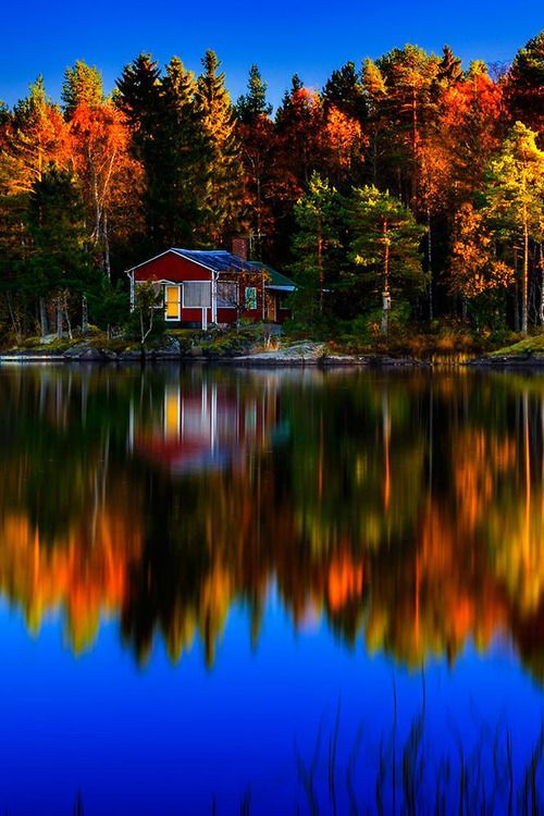 fall lake reflection