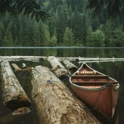 natural dock