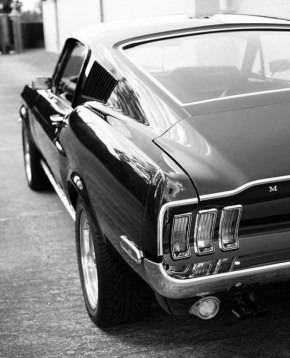 black and white mustang
