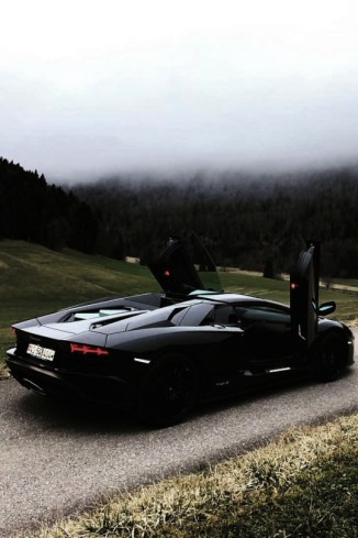 black lambo in nature