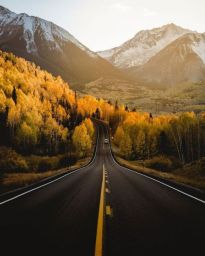fall tree lined road into mountains