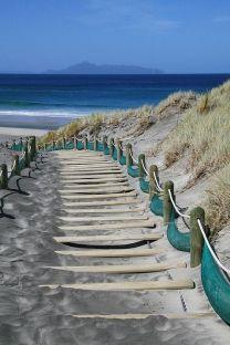 path leading to beach