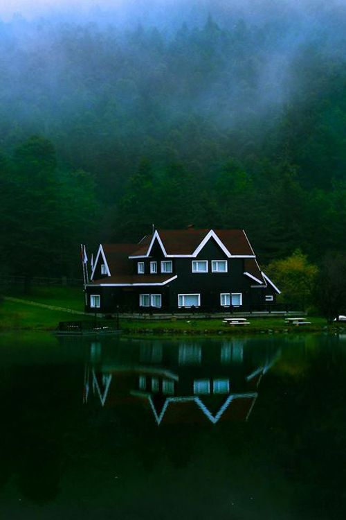 misty green mountain home
