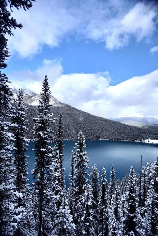 winter mountain scene