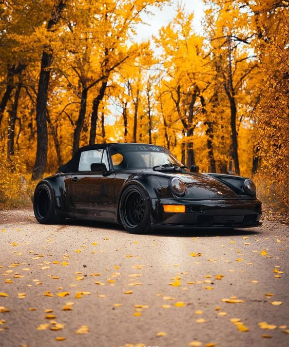 black porsche with fall trees