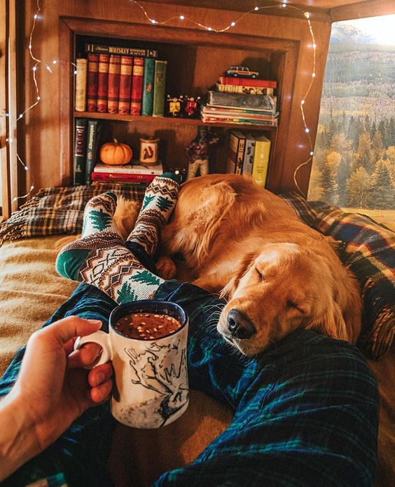 man and dog relaxing