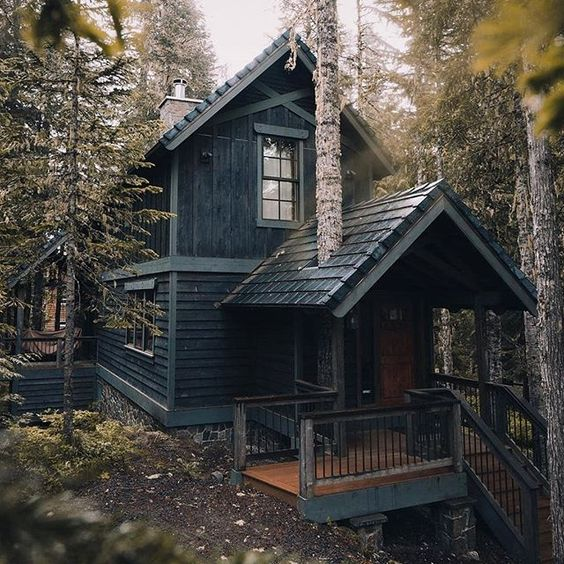 masculine home with tree growing through roof of porch