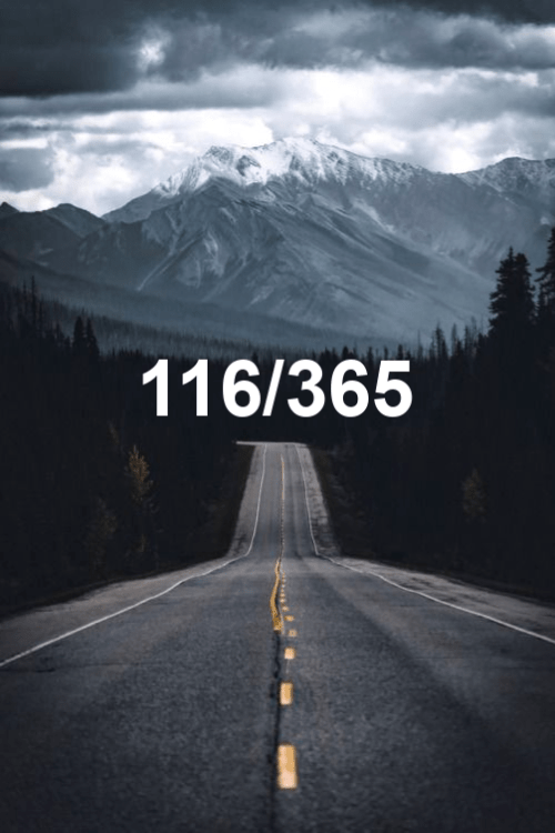 day 116 of the year 2019