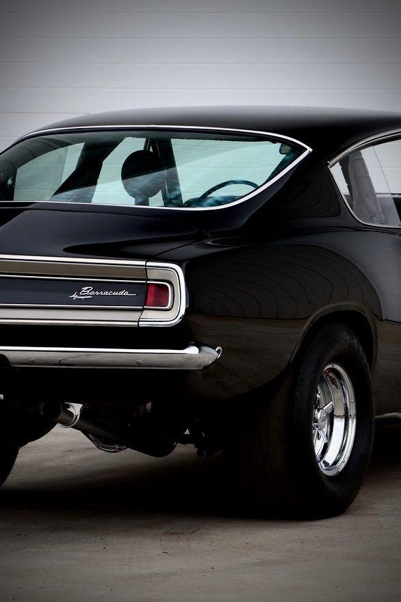 black barracuda rear end