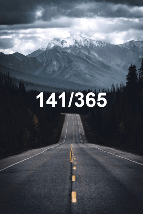 day 141 of the year 2019