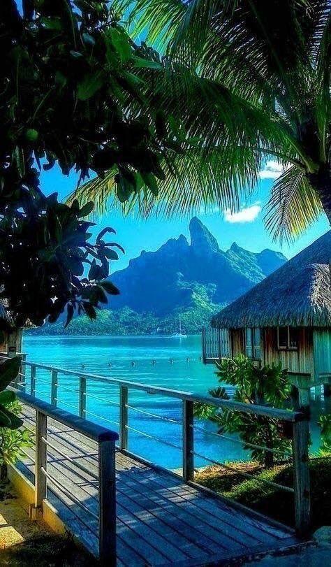 paradise motivation