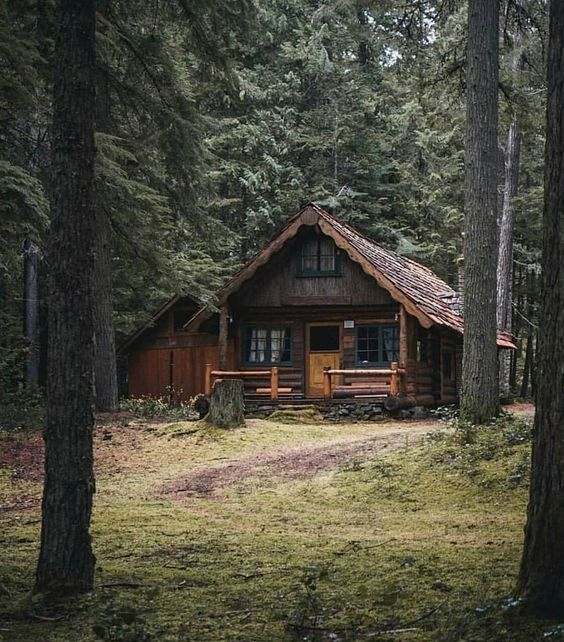 rustic cabin tucked away in the woods