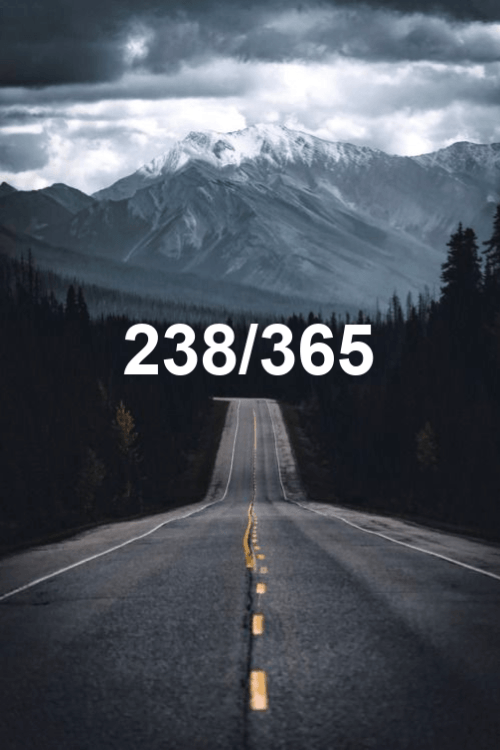 today is the 238th day of the year 2019