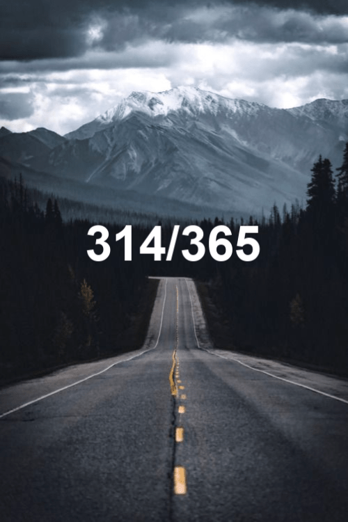 today is day 314 of the year 2019