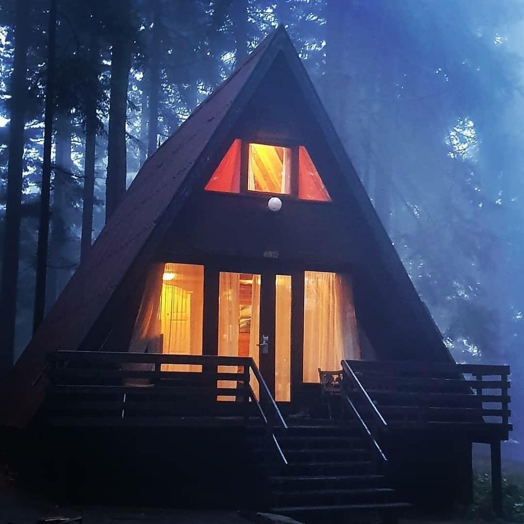 misty cabin in the woods