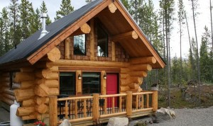the manly life - classic log cabin