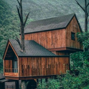 the manly life - custom tree house