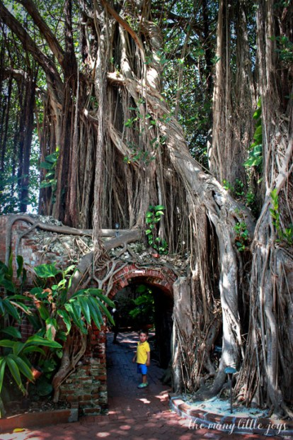 Travel with Kids - The Florida Keys and The Everglades Garden Club