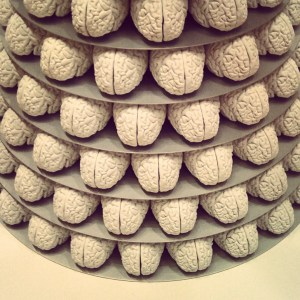 The Evolutionary Mystery of Left-Handedness and What It Reveals About How the Brain Works