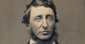 Thoreau on What Skunk-Cabbage Can Teach Us About Optimism and the Meaning of Human Life