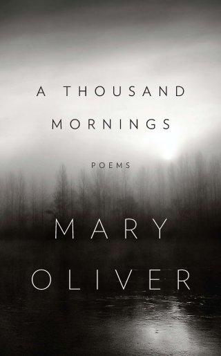 """""""I Go Down to the Shore"""": Natascha McElhone Reads Mary Oliver's Spare, Splendid Antidote to Melancholy and Personal Misery"""