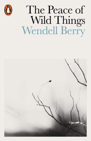 The Peace of Wild Things: Wendell Berry's Poetic Antidote to Despair, Animated