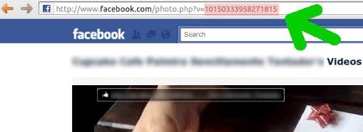 facebook video link