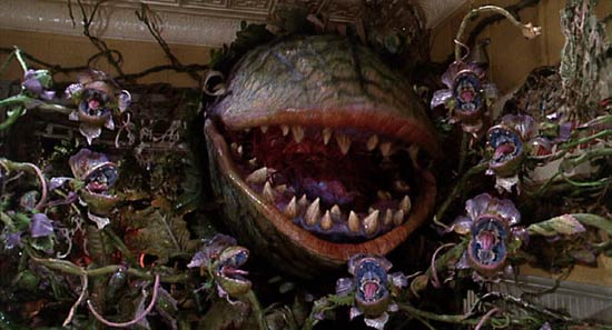 Audrey the flesh eating plant from Little Shop of Horrors