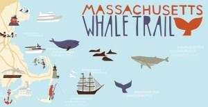 MA Whale Trail
