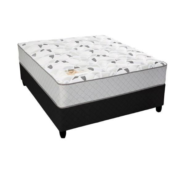 Rest Assured Geo II - Queen XL Bed