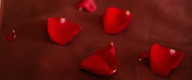 Valentine's duvet cover