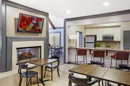 Designer Kitchen and Living Space