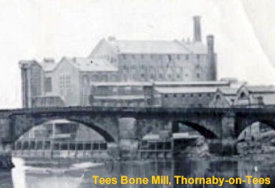 Tees Bone Mill