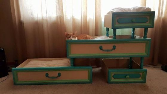 These vintage cat beds are made from old dresser drawers! Awesome! | www.themeowplace.com