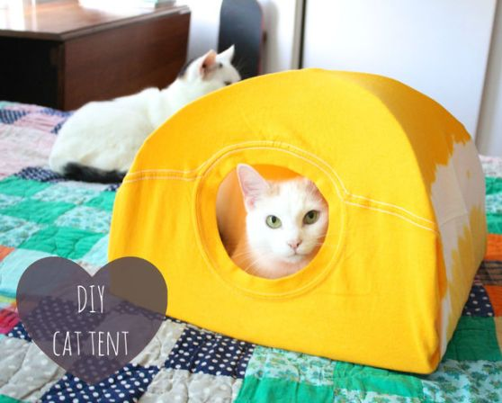 Your old t-shirts will get new life with this easy DIY cat tent. | www.themeowplace.com