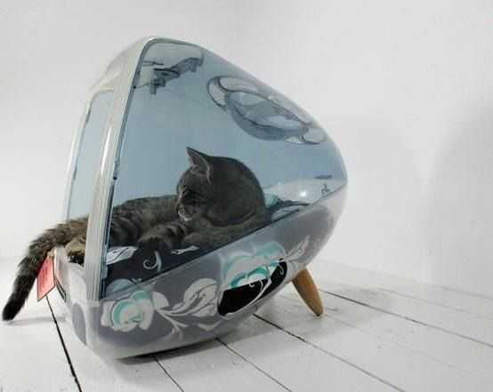 Don't take it to the junkyard just yet; you might have a vintage cat bed on your hands. | www.themeowplace.com